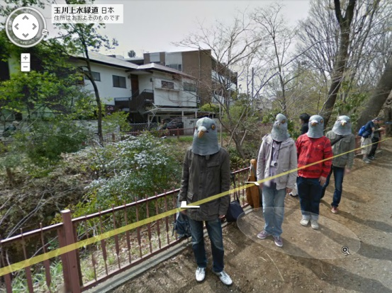 foto/ludzie-golebie-trollowanie-street-view-1.jpg