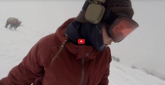 snowboard-niedzwiedz